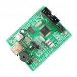 برد توسعه MSP430F149 دارای 2KB RAM