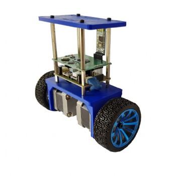 ربات تعادلی دو چرخ با قابلیت کنترل توسط موبایل
